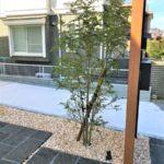 格子裏の植栽下にはスポットライトを設置