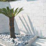 壁は高さを出すため乾式のタイル張りとしました。こだわりのソテツでリゾート感を演出✧˖°