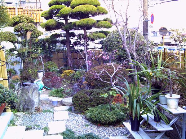 心癒されるくつろぎの和風庭園リフォーム – 大阪府豊中市 K様邸の施工前