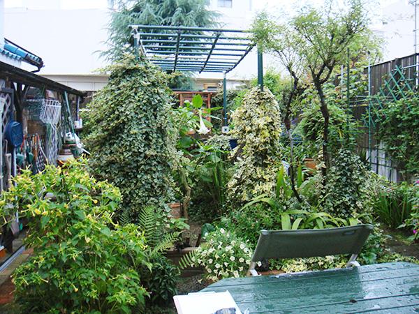 家族が集う庭空間へ – 大阪府豊中市 K様邸の施工前