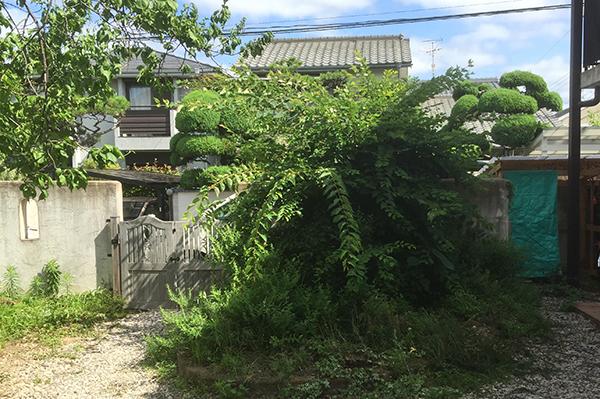 風と光をいっぱい取り込んだこだわりのお庭 – 大阪府豊中市 M様邸の施工前