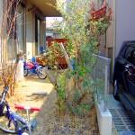 施工前:植栽スペースやお庭に自転車が置かれ雑然としていました