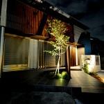 建物に映るイロハモミジの影が良い雰囲気を作り出します