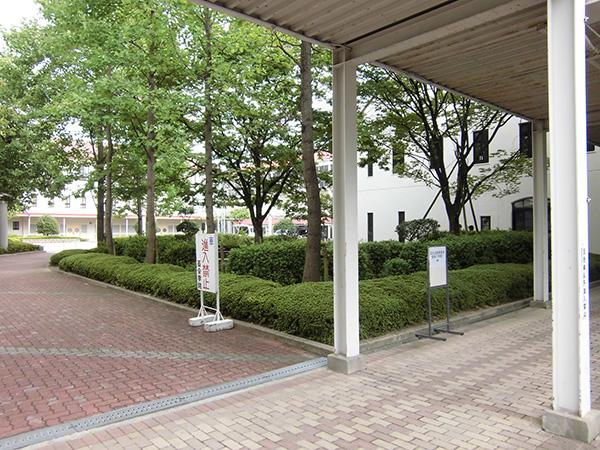 施工前:繁みに蚊が沢山いて暗かった広場横の植栽